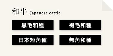 和牛は『黒毛和種』『褐毛和種』『日本短角種』『無角和種』