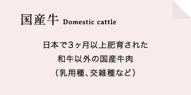 国産牛は日本で3ヶ月以上肥育された和牛以外の国産牛肉(乳用種、交雑種など)